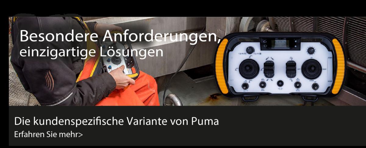 Puma kundenspezifische Variante