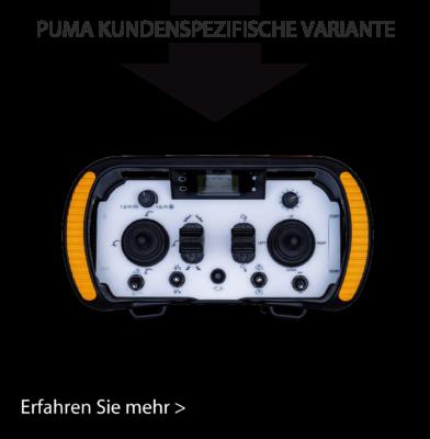 Erfahren Sie mehr zur kundenspezifischen Variante von Puma